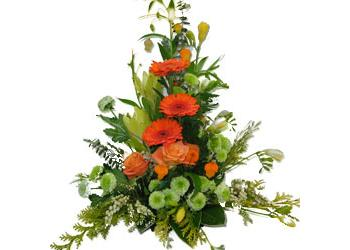 Green & Orange Pedestal