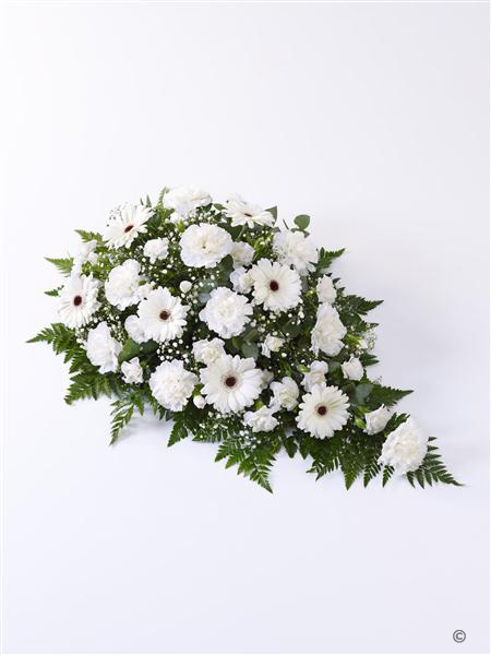 Carnation and Germini Spray White