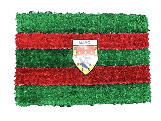 SG 179 MAYO COUNTY FLAG